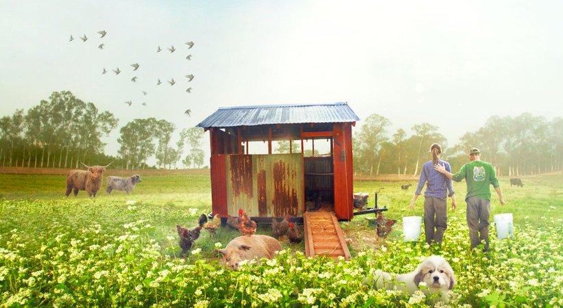 بزرگترین مزرعهی کوچک (The Biggest Little Farm)